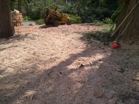 Burley Boys Tree Service, stump grinding