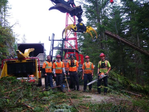 Burley Boys Tree Service, forest fuel reduction