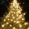 Burley Boys Christmas Tree Chip-Up