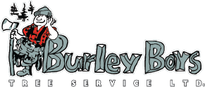Burley Boys Tree Service Ltd.