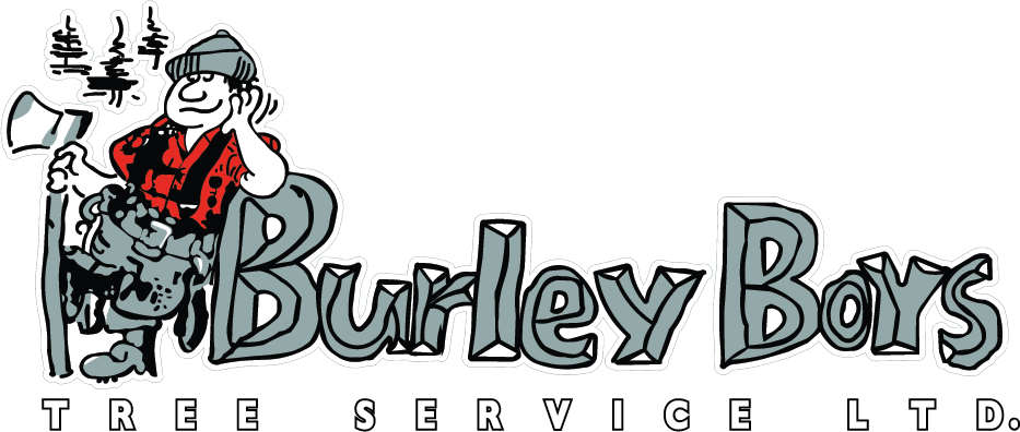Burley Boys Tree Service, West Vancouver, North Vancouver, Squamish, Whistler, Tri Cities